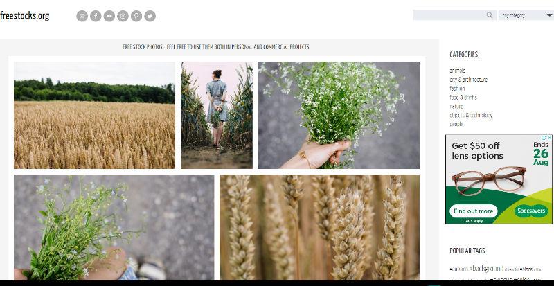 FreeStocks Website Screenshot