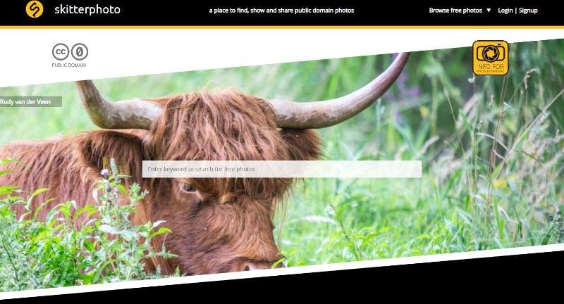 Skitterphoto Website Screenshot